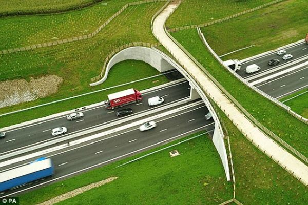 Future roads will be designed with panoramic views that stimulate drivers and prevent them from nodding off at the wheel, Highways England claims